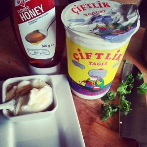Ingrediënten gegrilde ananas spiesjes met honig/yoghurt-dip en verse munt