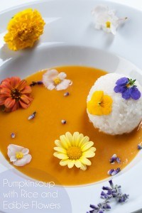 pompoensoep met eetbare bloemen