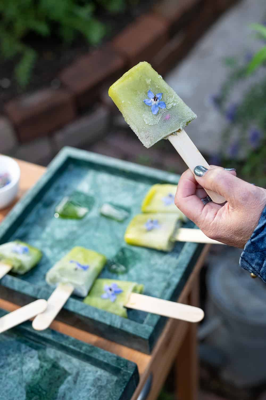 Borage komkommer ijsje van Restaurant 't Amusement LAB